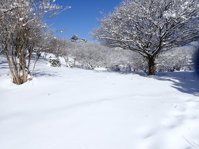 愛宕山_積雪 No117
