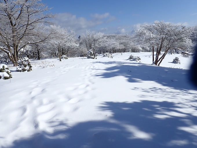 愛宕山_積雪 No118