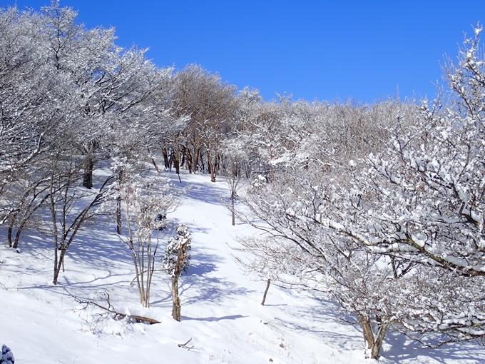 愛宕山_積雪 No122