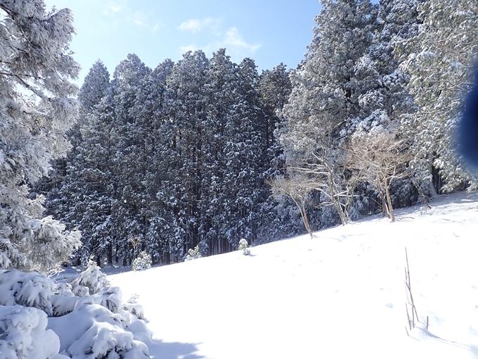 愛宕山_積雪 No123