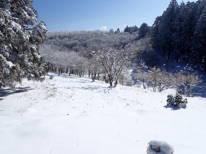 愛宕山_積雪 No124