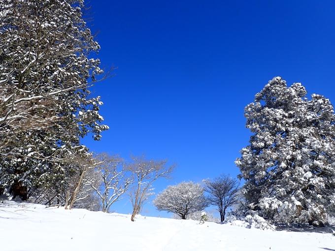 愛宕山_積雪 No125