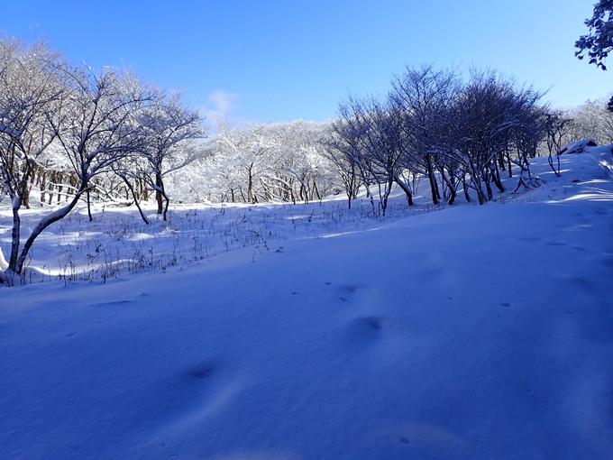 愛宕山_積雪 No126