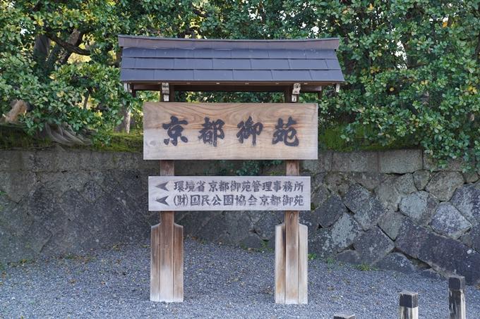 京都_桜_2020_01 No2