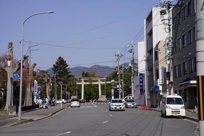 京都_桜_2020_07 No2
