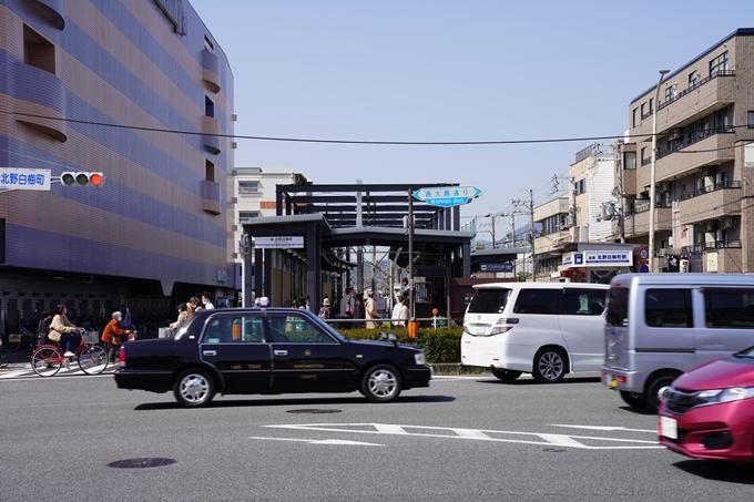 京都_桜_2020_07 No39