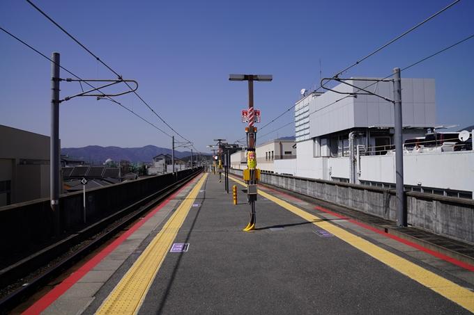 京都_桜_2020_07 No41