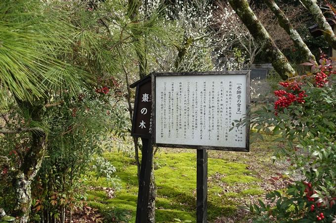 乃木神社 No20