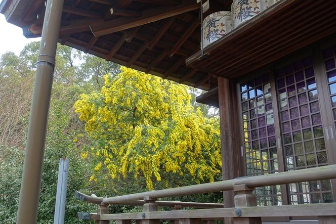 乃木神社 No27