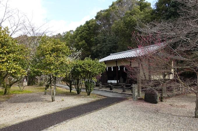 乃木神社 No34