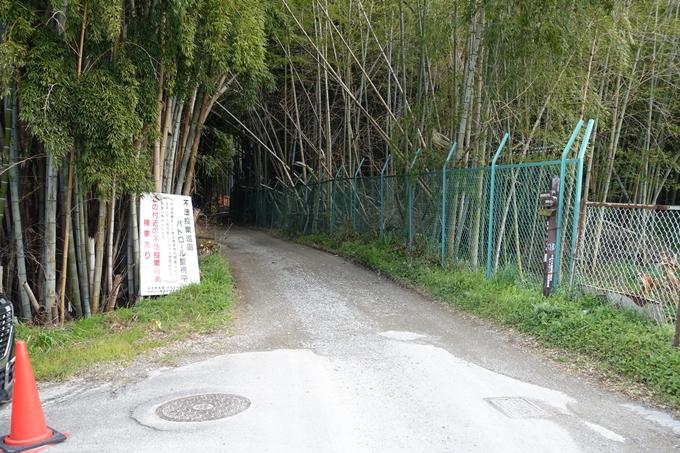 大岩神社 No2