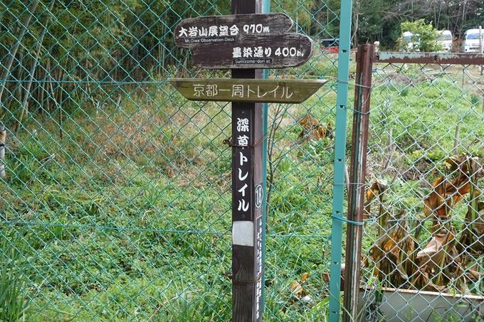 大岩神社 No3
