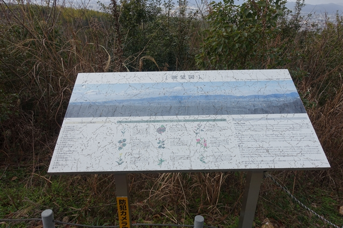 大岩神社 No16