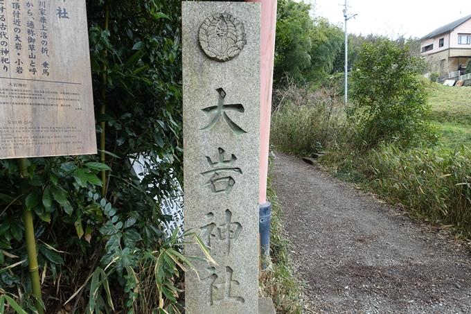 大岩神社 No56