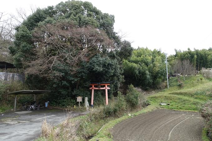 大岩神社 No60