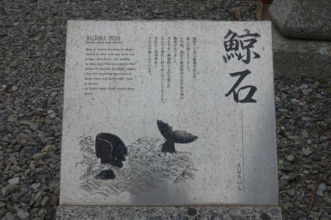 伊勢志摩_大王崎 No48