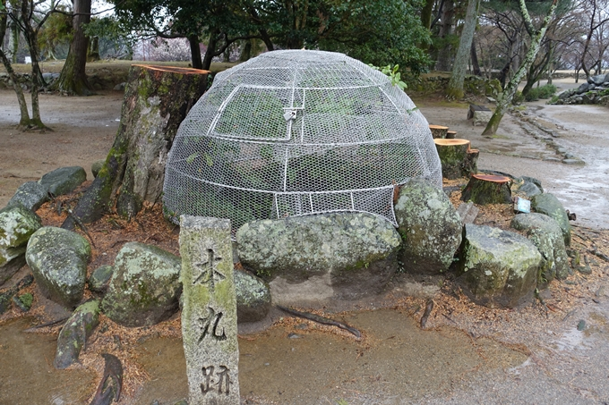 伊勢志摩_松坂城跡 No57