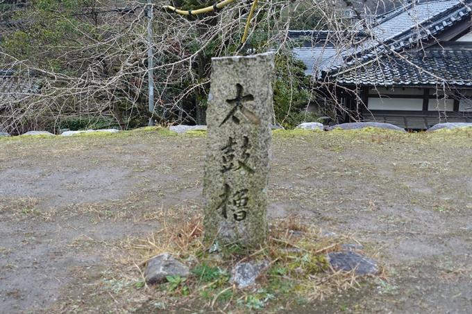 伊勢志摩_松坂城跡 No66