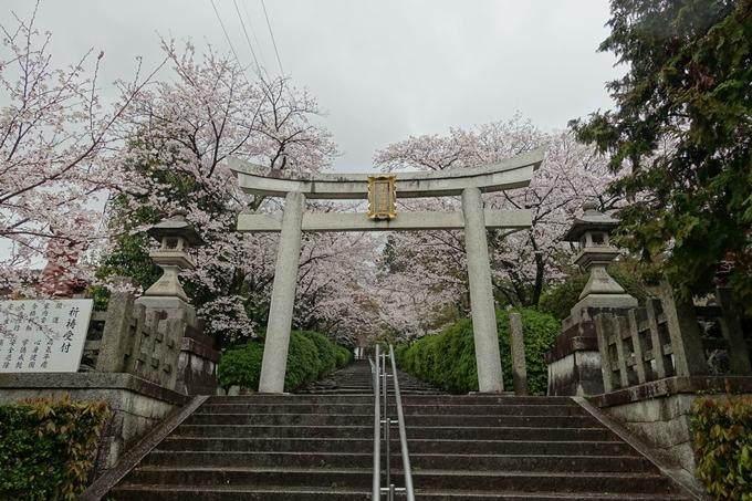 京都_桜_2020_21 宗忠神社 No2