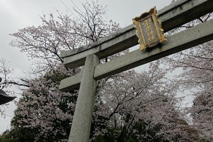京都_桜_2020_21 宗忠神社 No4