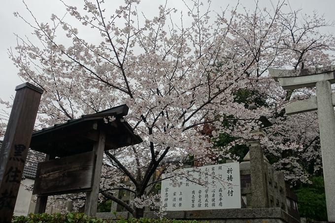 京都_桜_2020_21 宗忠神社 No3