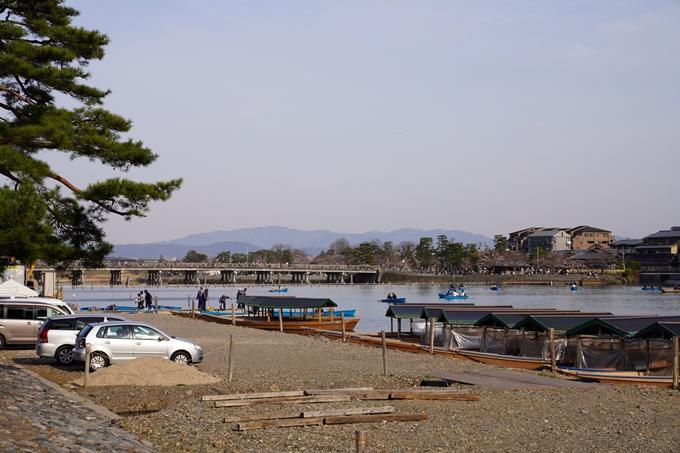 京都_桜_2020_17 嵐山公園 No17