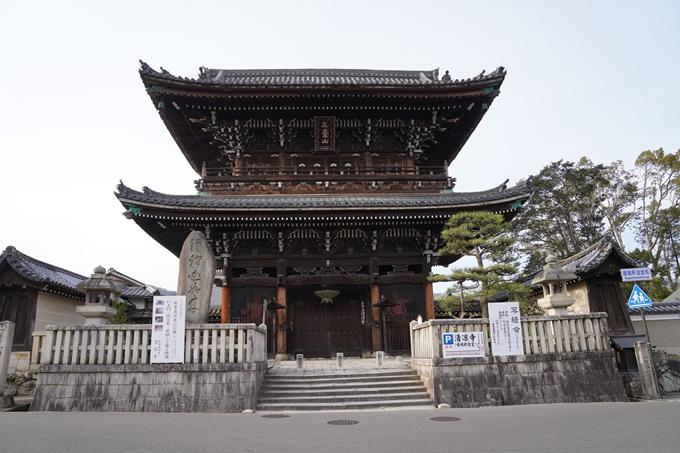 京都_桜_2020_18 嵯峨釈迦堂 No7