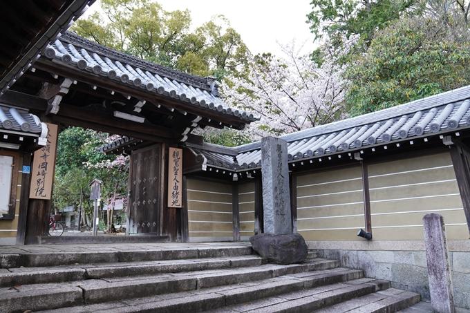 京都_桜_2020_24 岡崎神社 No10