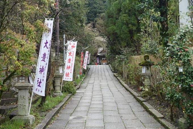 京都_桜_2020_19 大豊神社 No4