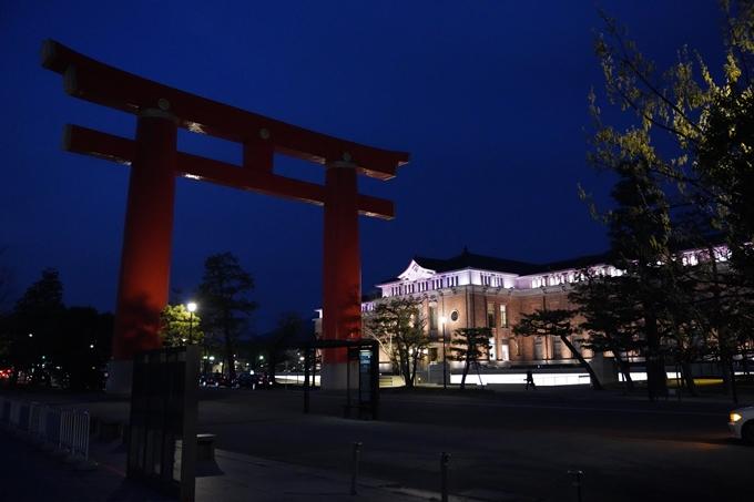 京都_桜_2020_37 岡崎疎水ライトアップ No51