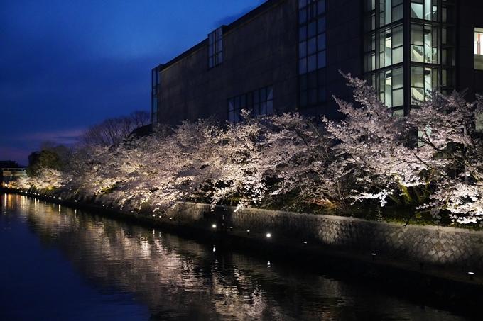 京都_桜_2020_37 岡崎疎水ライトアップ No53