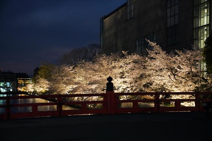 京都_桜_2020_37 岡崎疎水ライトアップ No57