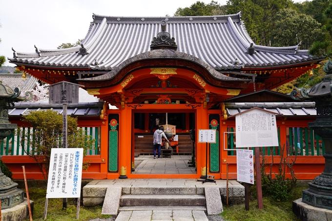 京都_桜_2020_40 毘沙門堂 No14