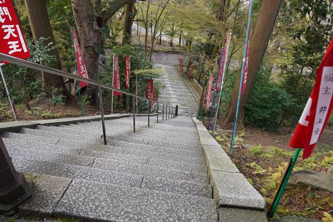 京都_桜_2020_40 毘沙門堂 No15