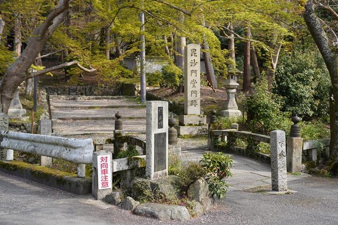 京都_桜_2020_41 No2