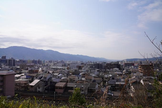京都_桜_2020_41 No32