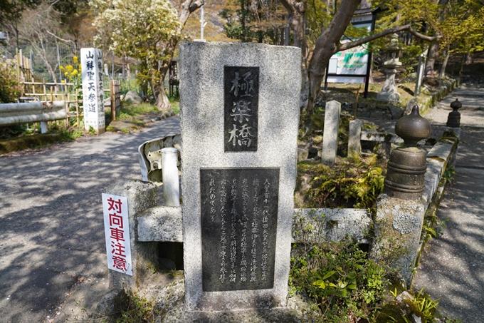 京都_桜_2020_41 No56
