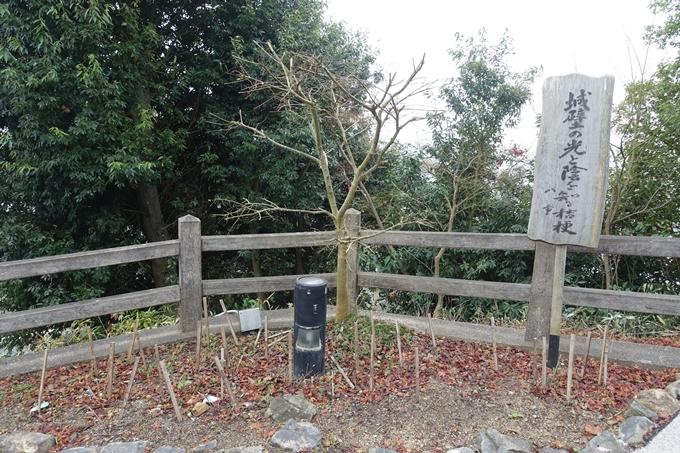 麒麟がくる_福知山城 No22