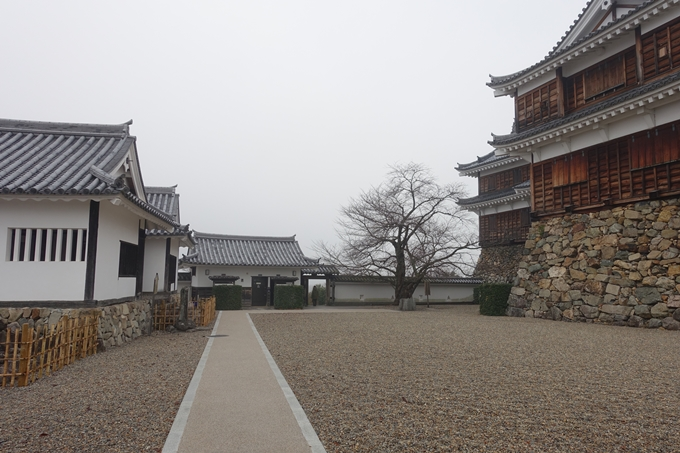 麒麟がくる_福知山城 No31