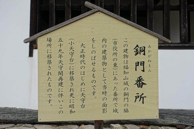 麒麟がくる_福知山城 No39