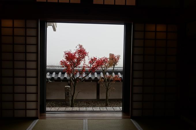 麒麟がくる_福知山城 No61