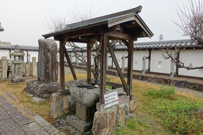 麒麟がくる_福知山城 No75