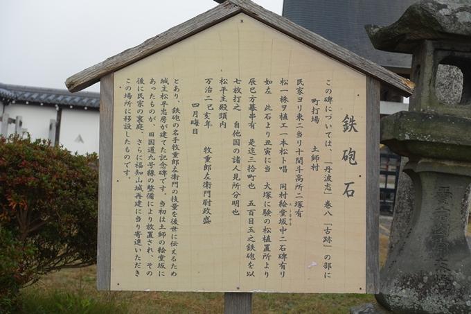 麒麟がくる_福知山城 No80