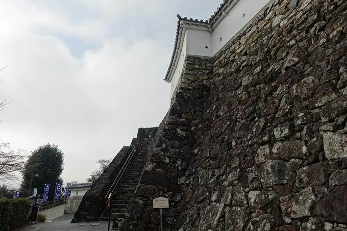 麒麟がくる_福知山城 No93