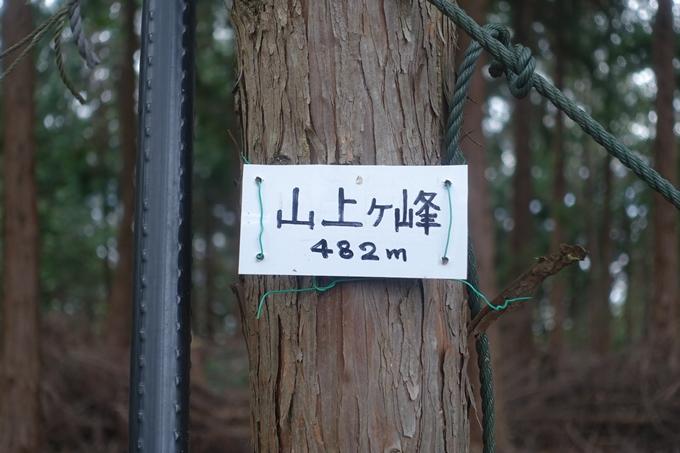 唐櫃越え_トロッコ保津峡 No63