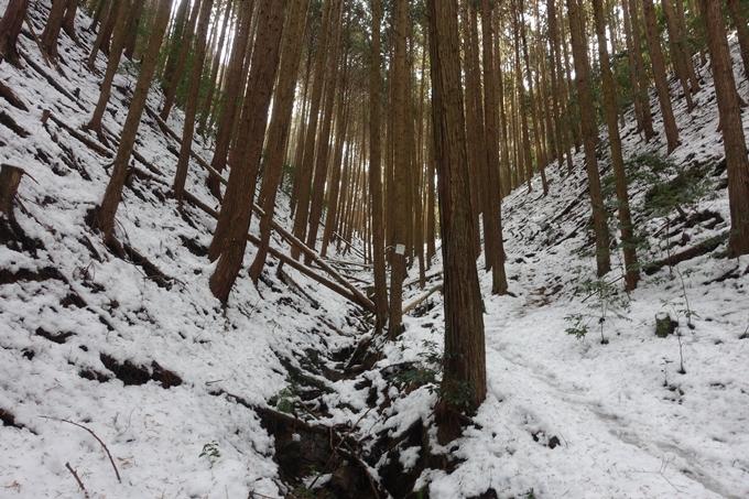 氷室神社 No2