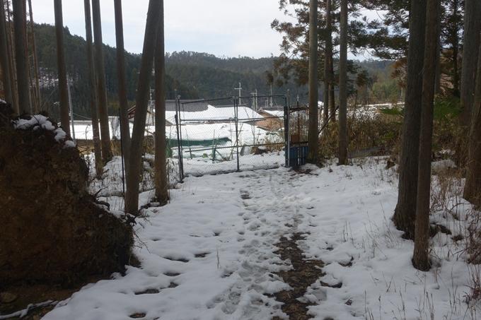 氷室神社 No7