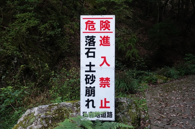 愛宕山_梨木谷林道 No26
