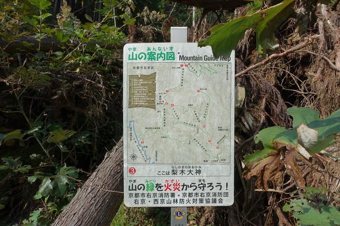 愛宕山_梨木谷林道 No54
