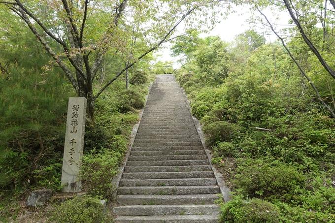 千手寺 No16